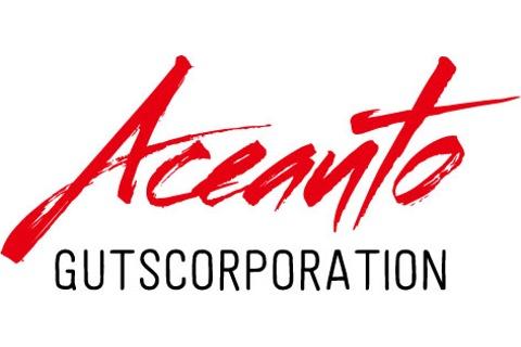 2年保証付き鑑定済み中古車 AceAutoAster&Guts