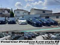 Total Car Produce Low style