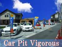 Car Pit Vigorous