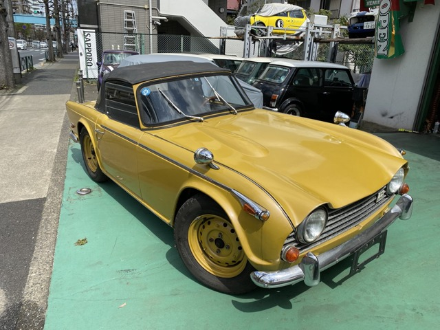 トライアンフ TR250 (東京都)