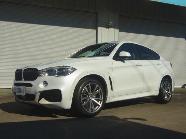 BMW X6 (山梨県)