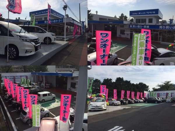 タックス桐生バイパス本店 (株)オートプラザ紹介画像