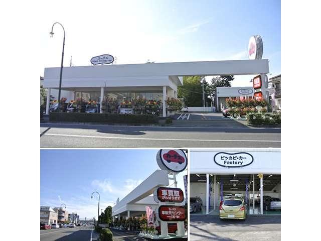 カーチス新潟桜木インター の店舗画像