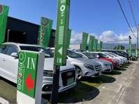 ブラウン&グリーンの看板が目印!豊富な在庫と元気なスタッフがお待ちしております!