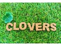 クローバーズ メイン画像