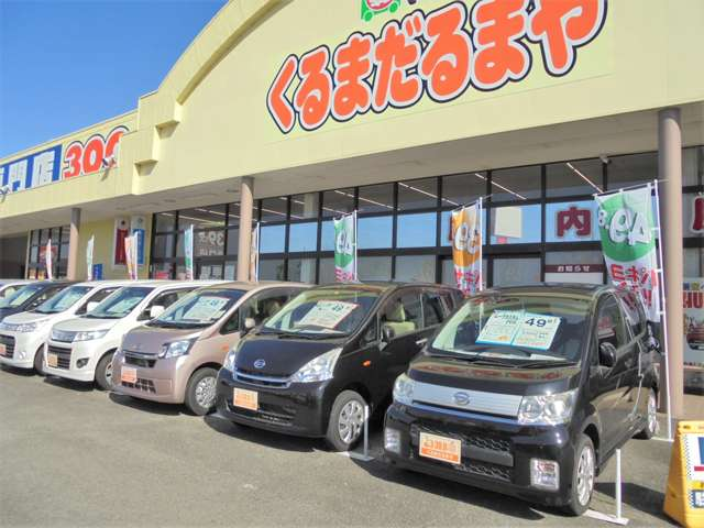 軽39.8万円専門店 くるま だるまや の店舗画像