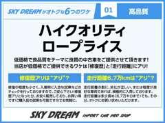 SKY DREAM | お店の実績